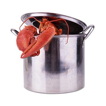 Lobster supplies you